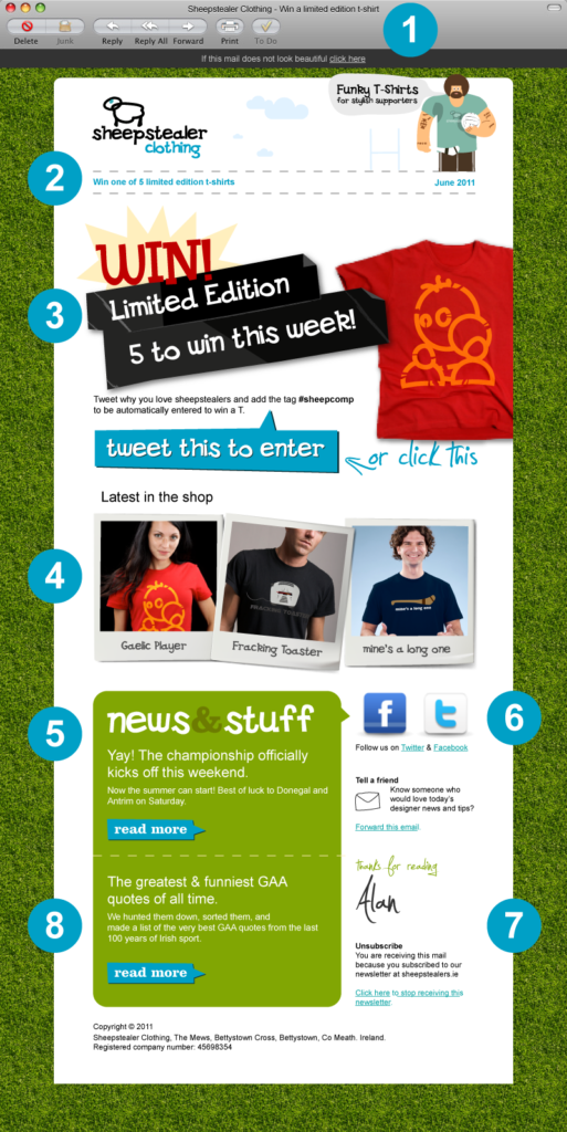 email-newsletter-example-template